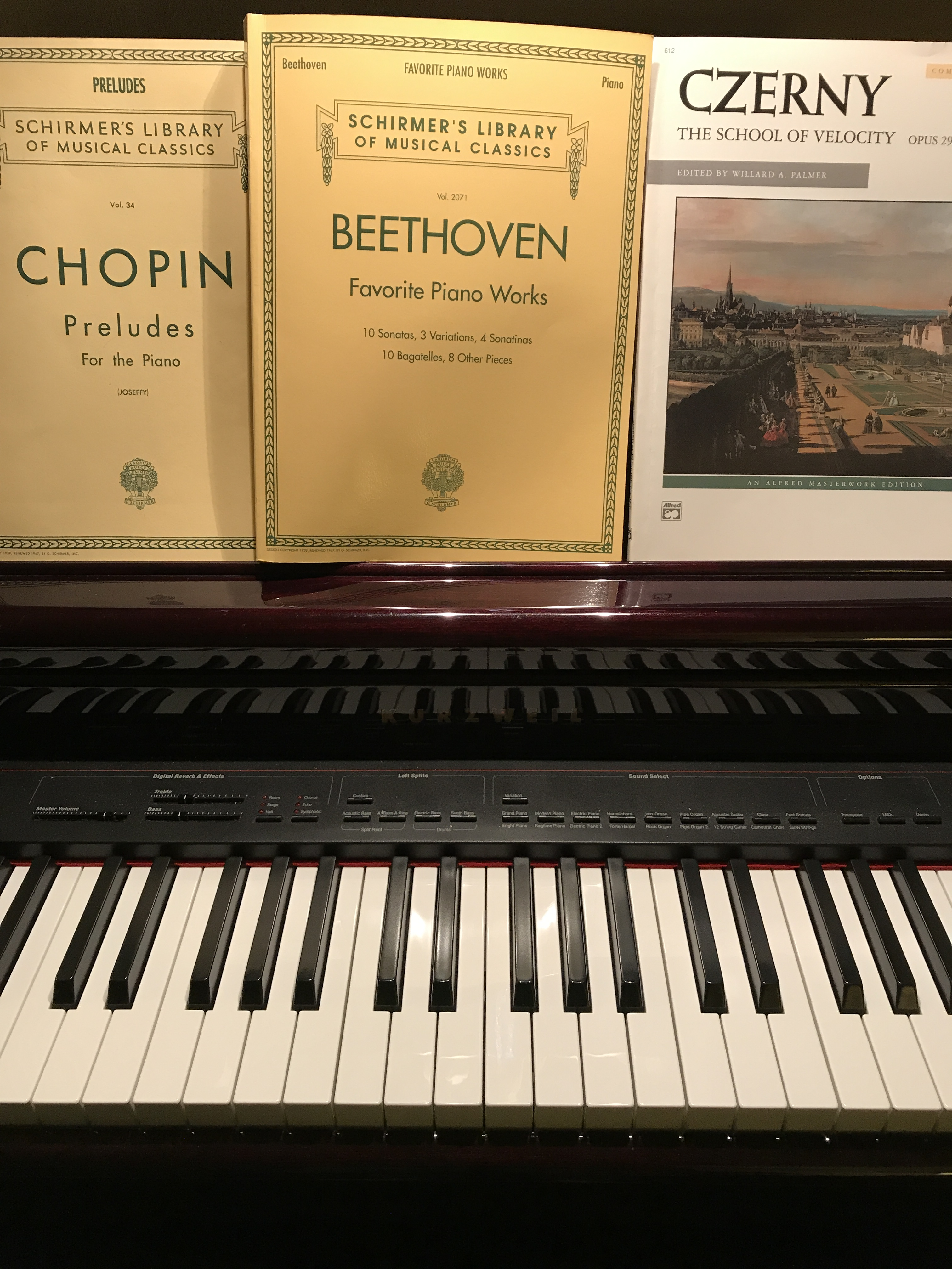 The piano: the principal prelude to musical prowess   A Good